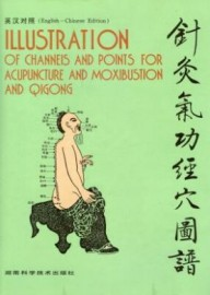 ILLUSTRATION channels/points for accupuncture/moxibustion/qigong
