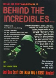 SKILLS OF THE VAGABONDS BOOK 2: BEHIND THE INCREDIBLES